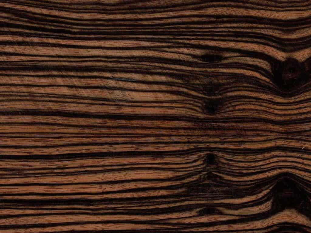 Das typische Zebramuster des Makassar-Ebenholzes