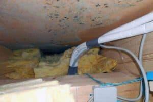 Hier wurde das Mauerwerk von Schimmel angegriffen. Grund dafür ist eine defekte Dampfbremse. Mit dem Blower-Door-Test können solche Leckagen schon entdeckt werden bevor solche Schäden entstehen.