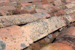 Dieses Dach ist voll von Flechten. Diese müssen zuerst entfernt werden. Das geschieht bei der Dachreinigung.