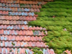 Bei der Dachbegehung wird geprüft welche Schäden vorhanden sind und ob sich eine Dachbeschichtung für dein Dach eignet.