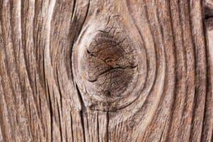 Holz mit solchen Astgabelungen eignet sich nicht zum Fräsen.