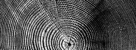 Holz bürsten und strukturieren