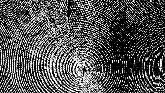 2 Praxistipps: Holz bürsten und strukturieren (+ Bonustipp) · BAUBEAVER