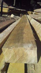 Holzbohle aus Ipe / Lapacho