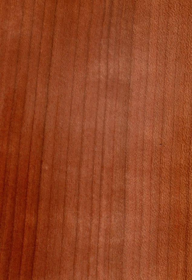 6 Kirschbaumholz Fakten Wissen Für Macher Baubeaver Baubeaver