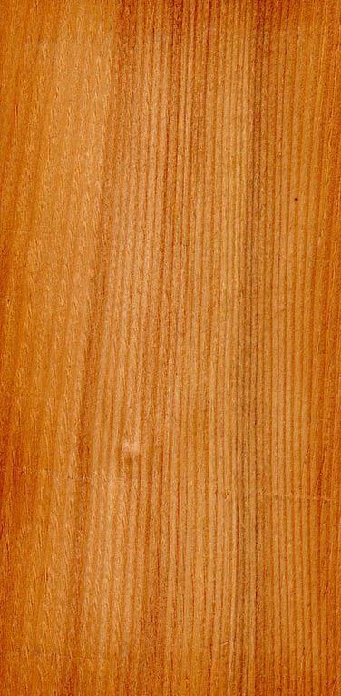 6 tannenholz fakten wissen f r macher baubeaver baubeaver. Black Bedroom Furniture Sets. Home Design Ideas
