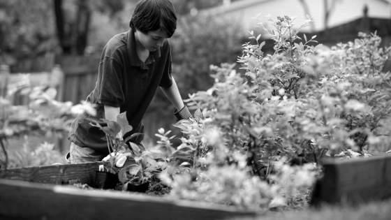 werkbank-fuer-gartenarbeiten-pflanztische