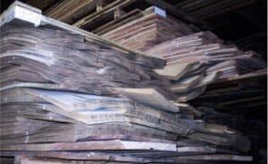 Bild 12: zu Bündeln zusammengebundene Furnierblätter