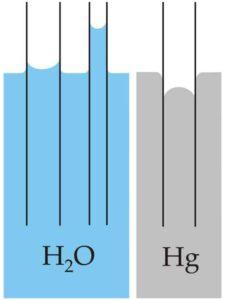 werkbank-infos-kapillaritaet-diffusion-kapillarwirkung